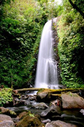 Objek Wisata Air Terjun Desa Munduk